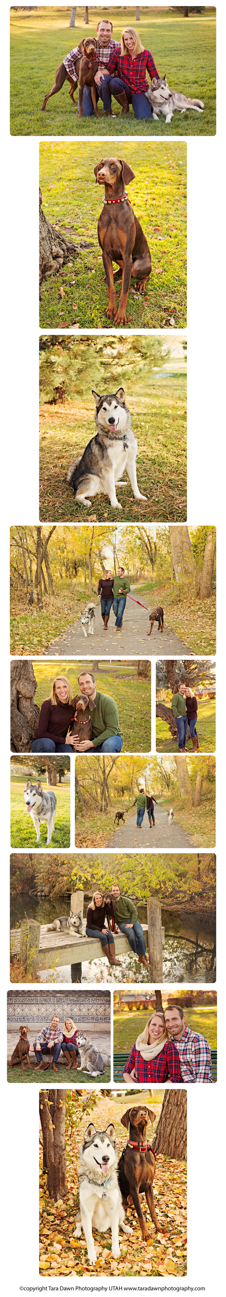 utah_pet_photographer_family