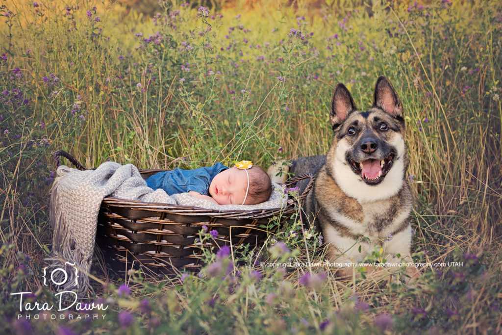 Utah_maternity_newborn_photographer-z17