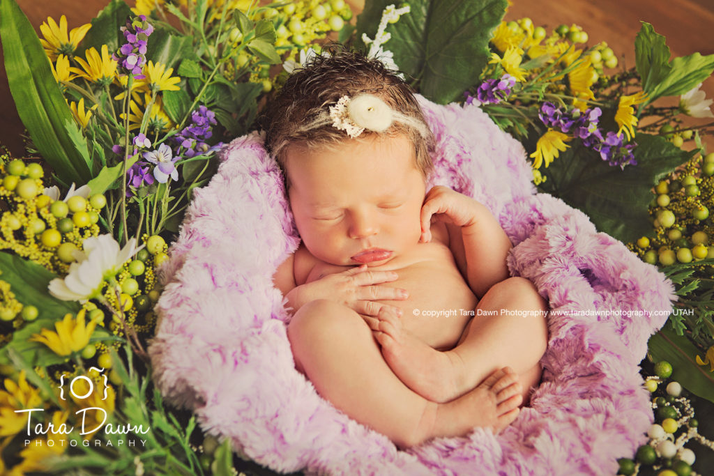Utah_maternity_newborn_photographer-z5